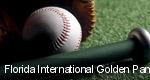 Florida International Golden Panthers tickets