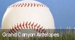 Grand Canyon Antelopes tickets