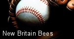 New Britain Bees tickets