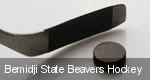 Bemidji State Beavers Hockey tickets