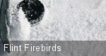 Flint Firebirds tickets